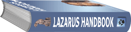 New Update about Lazarus Handbook 12  21/2/2020